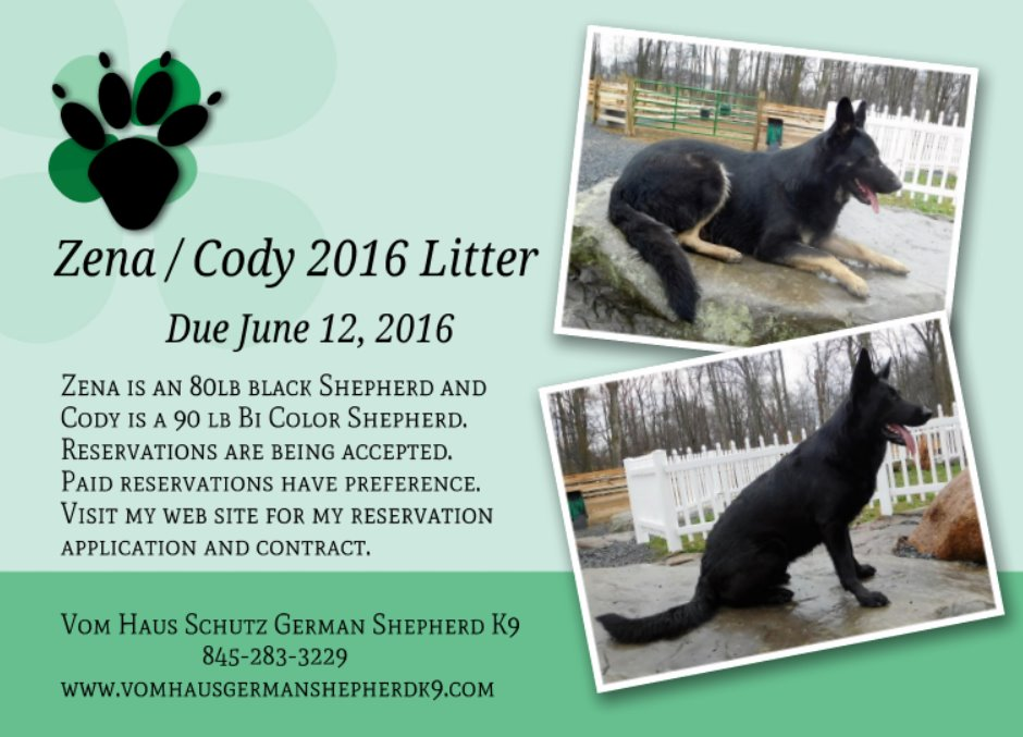 Zena and Cody Breeding announcement