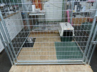Inside Whelping Room Kennel