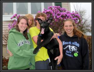 Puppy #5, Elizabeth, Joseph, Sarah, And Rachel April 25, 2011Framed