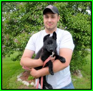 Zyka Puppy 4 Brennan And Mika Sold Framed Home Photo