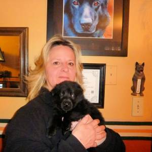 Zyka Puppy #6 Sold Photo